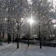 Winterbilder (26.12.2014)