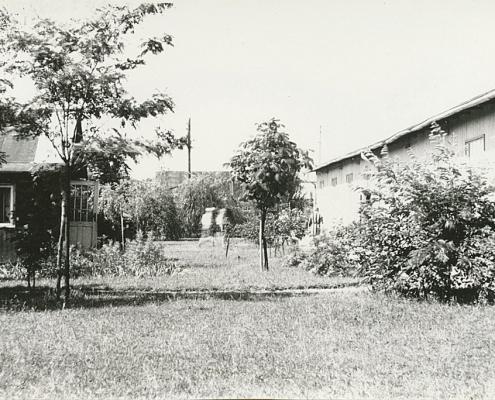 Blick zum Elkartweg, links die Jugendlaube (ehemals erstes Clubhaus/Kantine), rechts die Bootshalle
