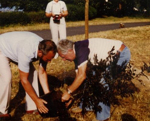 Hannes und Gerhard Schäfer pflanzen den Baum